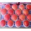 【量足价低】山东苹果产地批发红富士苹果