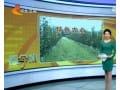 河北省将对特色农业给予保险保费财政奖补 (867播放)