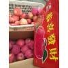 山东苹果基地苹果出售品种
