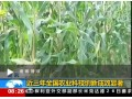 农业部:近三年全国农业科技创新成效显著 (1348播放)