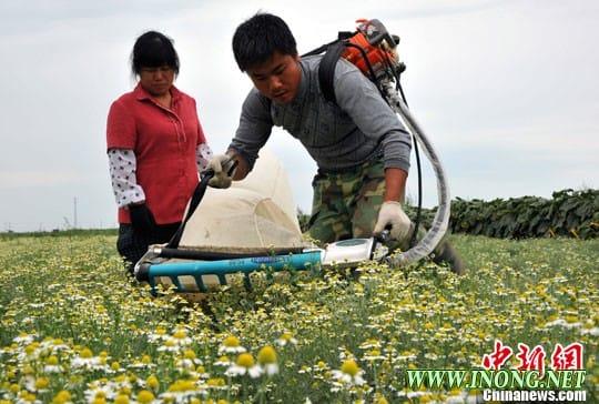农业部:部属无领导职务科技人员可兼职并获合法报酬