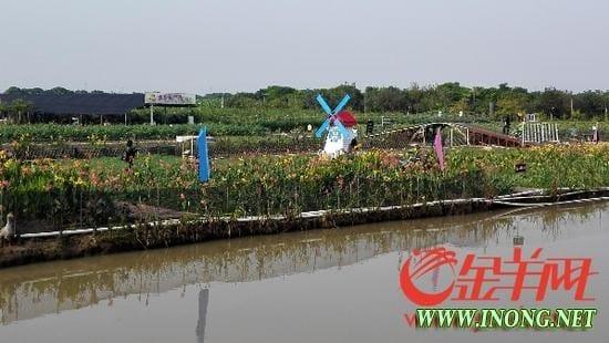 中山首家生态农业旅游类国家A级景区挂牌