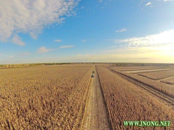 吉林:争当现代农业排头兵