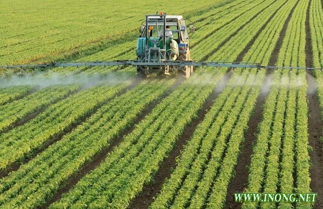 农批市场寻求转型 信息化改革面临三大挑战