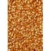 常年收购玉米大豆高粱碎米淀粉等饲料原料1