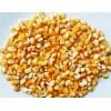 玉米600吨