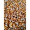 玉米收购点 惠侬常年求购玉米高粱大豆棉粕次粉荞麦油糠碎米