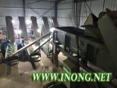 邢台大量优质板栗批发 优质板栗供应 邢台板栗批发市场