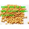 大量收购(玉米)(小麦)(菜籽饼)(高粱)(大豆)高价收购