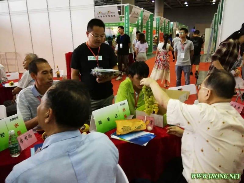 2019年第二届直供粤港澳农产品(广州)产销对接会