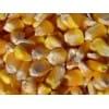 酒厂求购玉米高粱大米大豆等酿酒原料