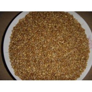 四川穗粮求购小麦